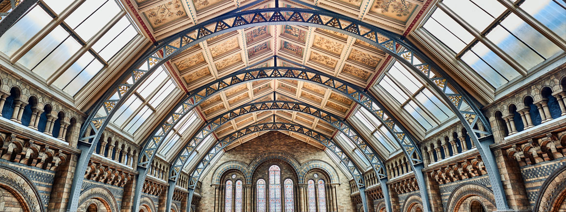 Hintze Hall July 2016. Natural History Museum, London